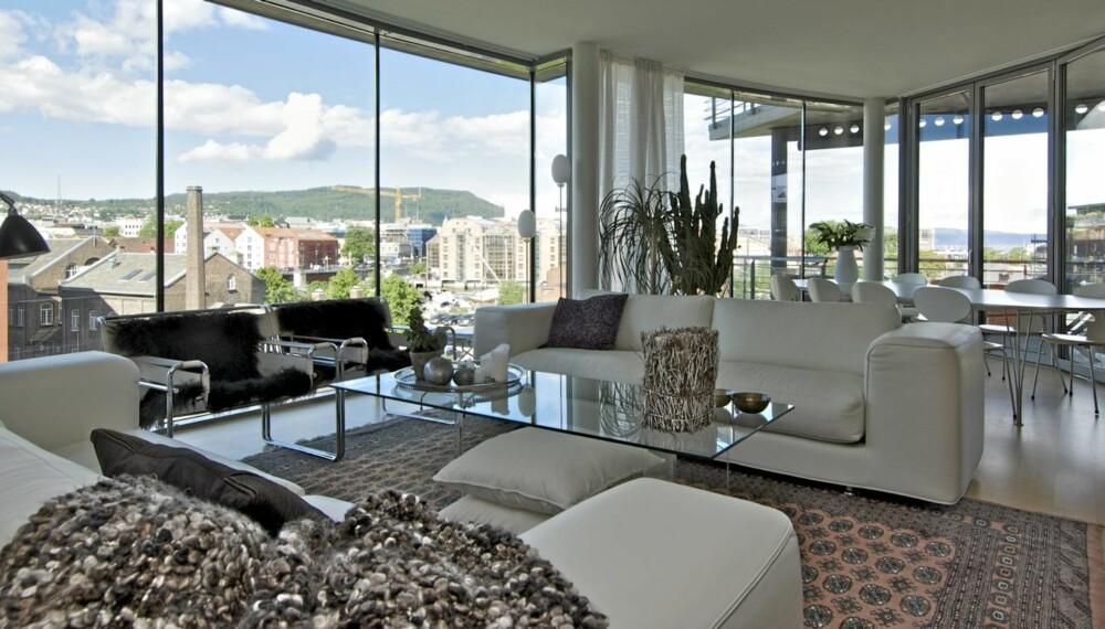 WOW: Utsikten fra toppleiligheten til interiørakitekt Sissel Nordberg er enorm. Boligen har glass i hele fronten mot Trondheimsfjorden og leiligheten er møblert i en miks av moderne designklassikere. Dette er et tidløst interiør.