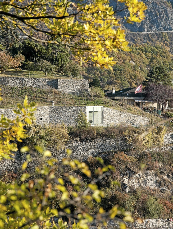GODT INTEGRERT: Feriehuset ligger i fjellsiden i det svakt bølgete landskapet. Det eneste sterke signalet som viser byggets tilstedeværelse er det store vinduet.