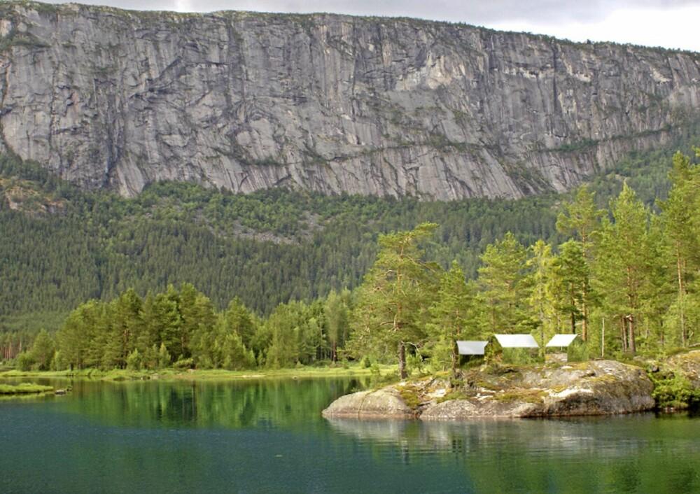 NATUROPPLEVELSE: Ifølge ideskaperne kan hyttene lett fraktes, blant annet med helikopter, og plasseres der man måtte ønske.