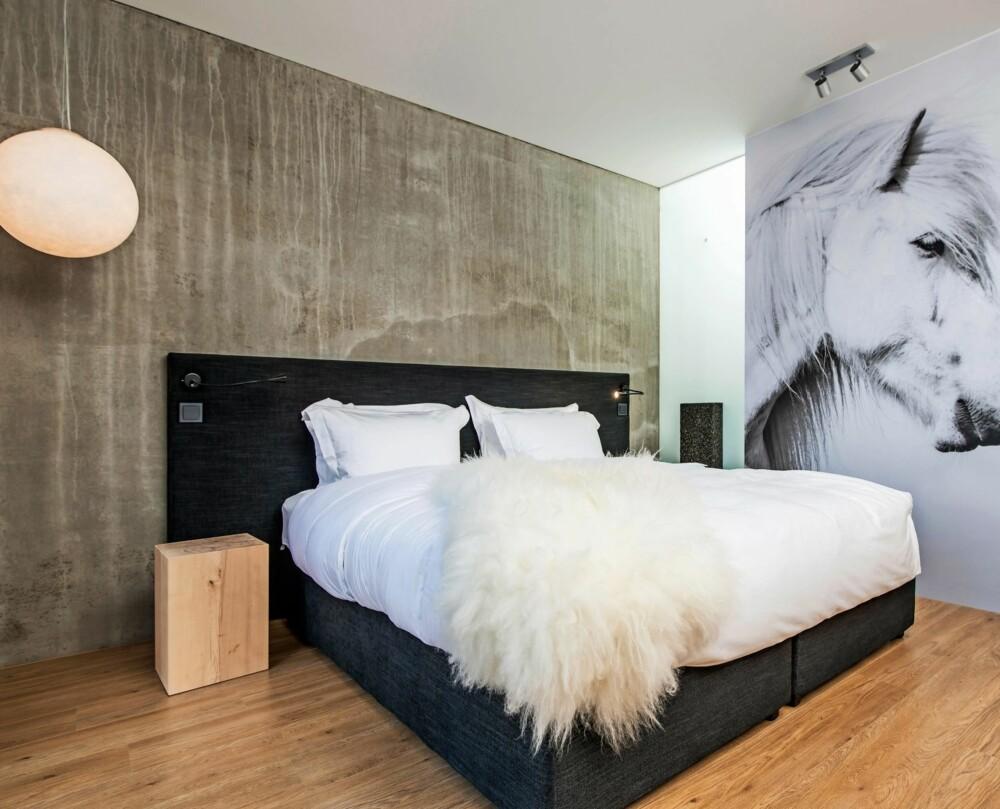 MATERIELL KONTRAST: Røff betong, organisk tre og store svart-hvitt bilder av islandsk natur og dyreliv går igjen i hotellets interiør. Også musikken som spilles på hotellet er islandsk.