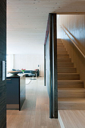 RENE LINJER: I utformingen av boligen var man bevisst på å unngå unødvendige utspring, fordi disse kunne øke energibehovet.