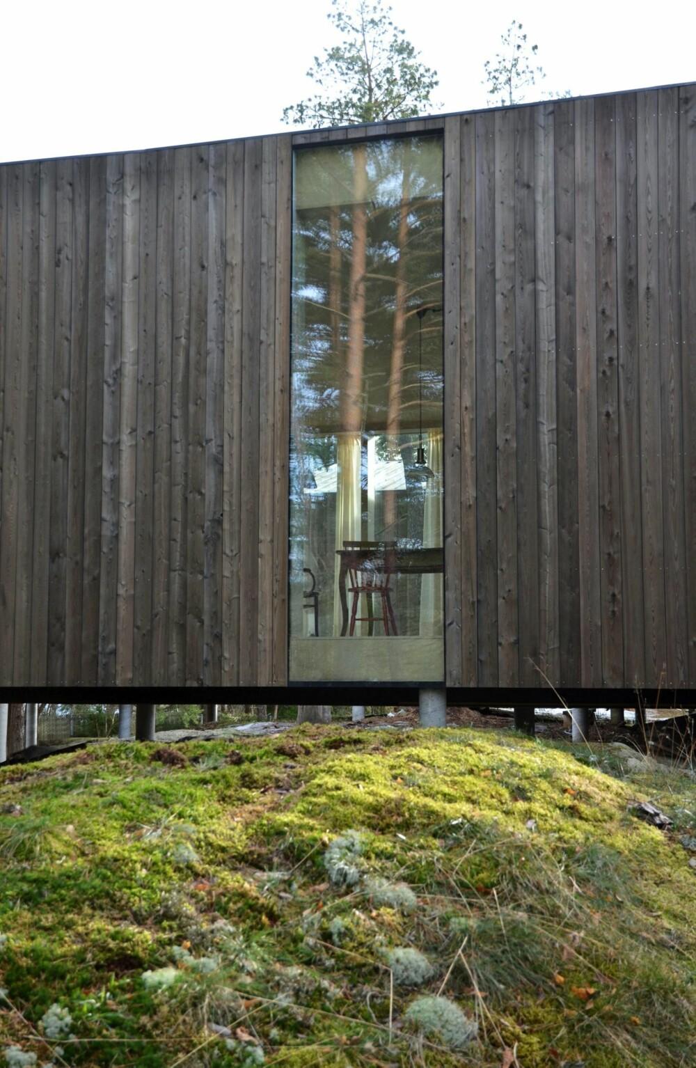 TRANSPARENS: Huset vender seg inn mot et atrium, og en utstrakt vindusbruk lar oss se inn selv om vi står utenfor.