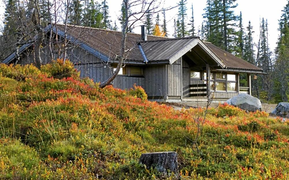 EN MODERNE KLASSIKER: Hedda hytta er et ikon i norsk hyttearkitektur.