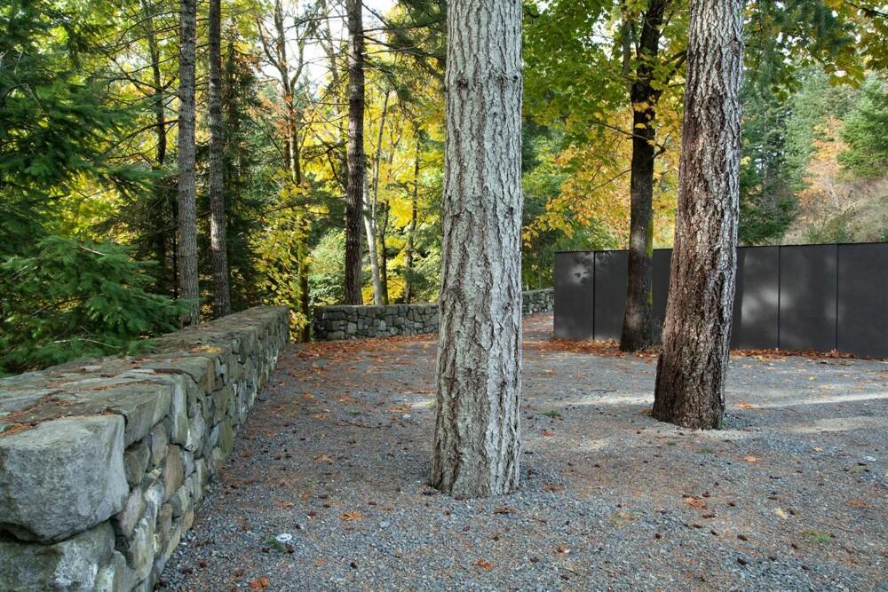 TETT PÅ: Naturen er sluppet helt inn på huset, og trærne har fått stå der de ikke har vært til hinder for konstruksjonen. (FOTO: James Dow/Patkau architects)