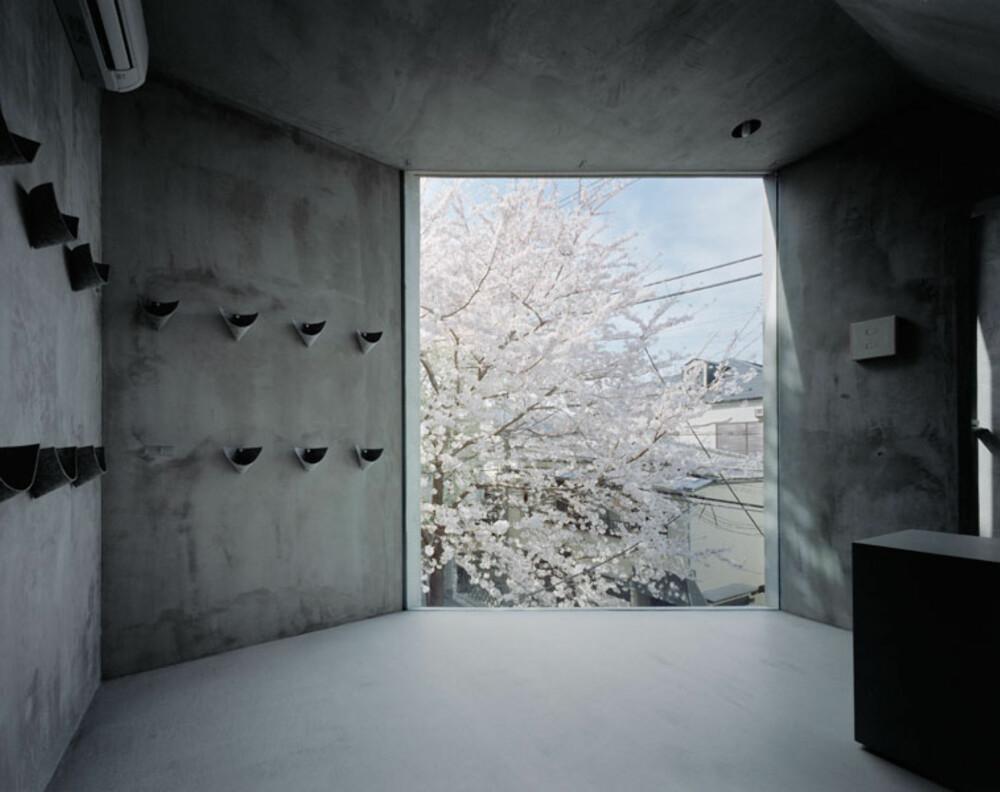UTSIKT: Store vinduer rammer inn naboens vakre kirsebærtre.