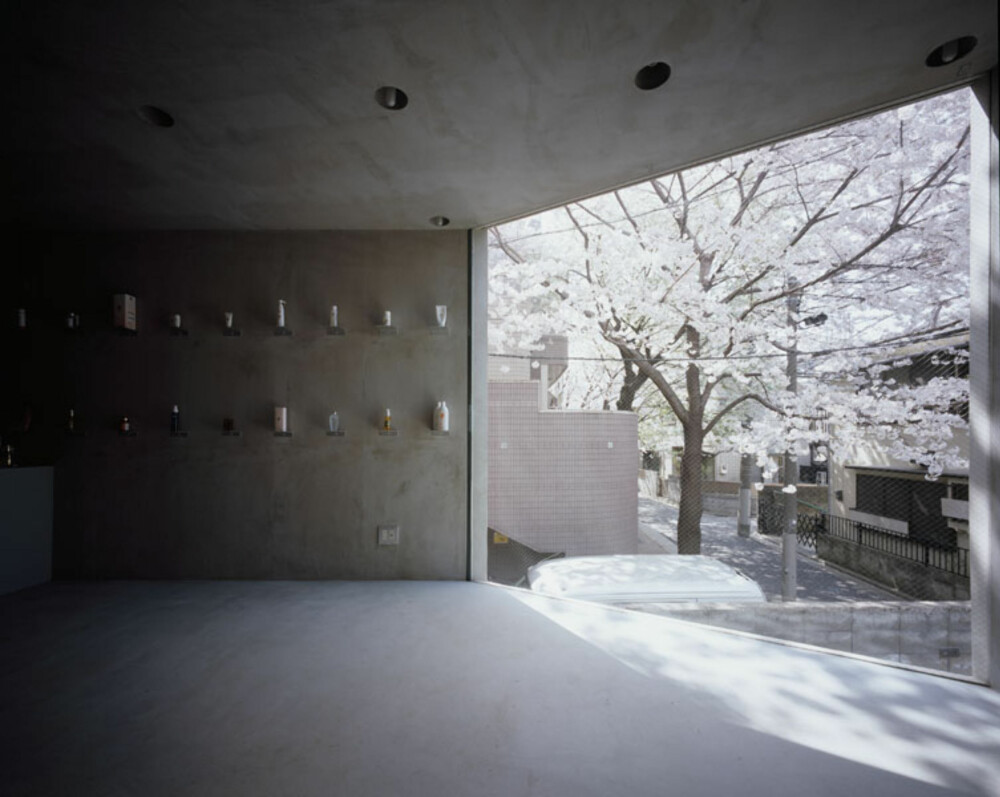 BLOMSTER OG BETONG: Kontrastene mellom kirsebærtreet og den rå betonget i det smale huset er stor.