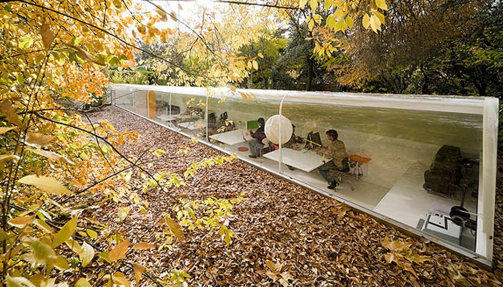 ARBEIDSDAG: Disse arkitektene nyter naturen fra kontorvinduet.