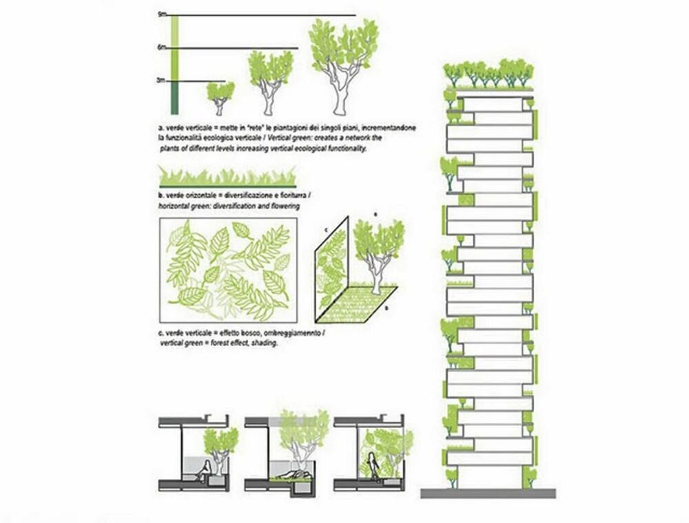 """GRØNNE HJEM: Utvalget trær og planter som skal vokse i denne """"skogen"""" er nøye utvalgt."""