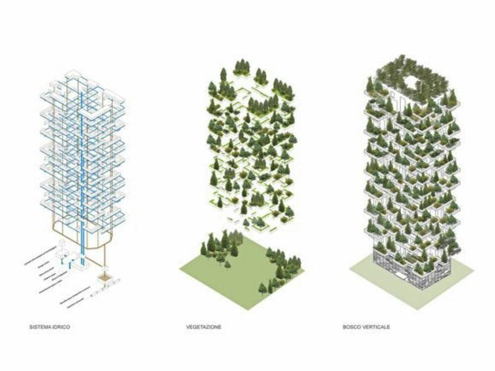 OPP, OPP: Det krever litt planlegging å få til en skog som vokser oppover.