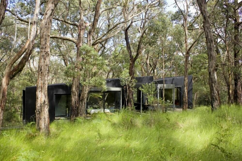TETT SKOG: Den kullsvarte hytta ligger nesten skjult mellom trærne. Når mørket faller på glir hytta inn i terrenget og blir nesten usynlig.