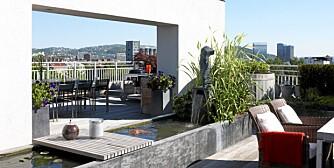 MED HIMMELEN SOM TAK. Sivilarkitekt Odd Degnæs har tegnet 250 kvadratmeter stor takterrasse i Oslo sentrum. Terrassen er inspirert av japansk hagekunst og har blant annet egen karpedam.