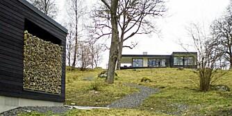 VARSOMT PLASSERT: Villa Remshagen, som ligger litt nord for Stockholm og var kandidat til den svenske Träpriset i 2008, ligger varsomt plassert på bakketopp omgitt av eiketrær.