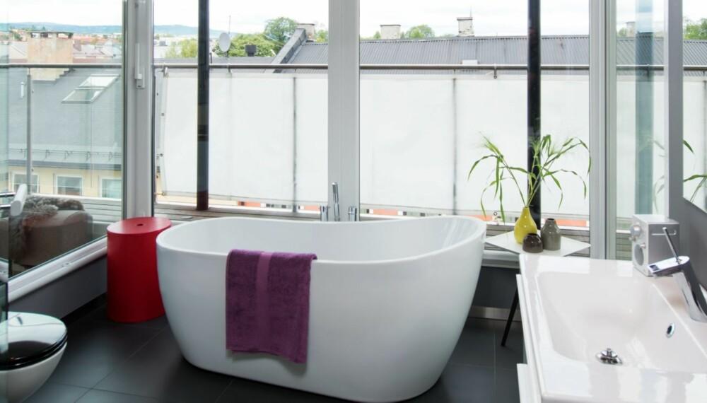 INNSYN OG UTSYN: Badet på 17 kvadratmeter i toppetasjen har mange glassflater både ut mot naturen og inn mot stuen og arbeidsrommet. En spesialsydd seilduk hindrer eventuelt innsyn. (FOTO: Espen Grønli)