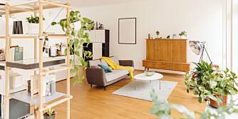 MYE Å TENKE PÅ: Helhvitt og grått er ingen gode farger i noen rom, mener eksperten. Rødt kan gjøre deg aggressiv, mens oransje kan fungere fint til en stue om du er glad i å holde fest.