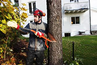 Retning: treet faller nitti grader på linjen i bunnen av styreskjæret.