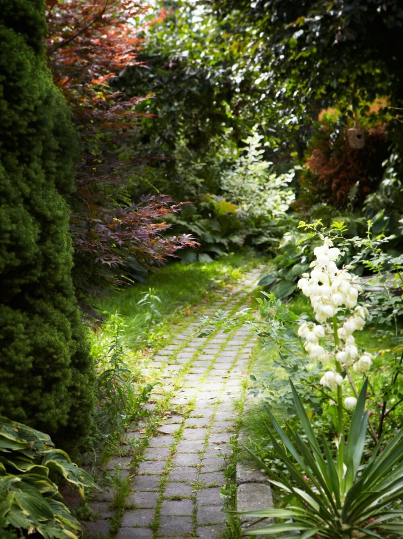 SKAP SPENNING: En enkel sti belagt med steinheller viser vei gjennom den frodige hagen. Hva venter i enden, mon tro?