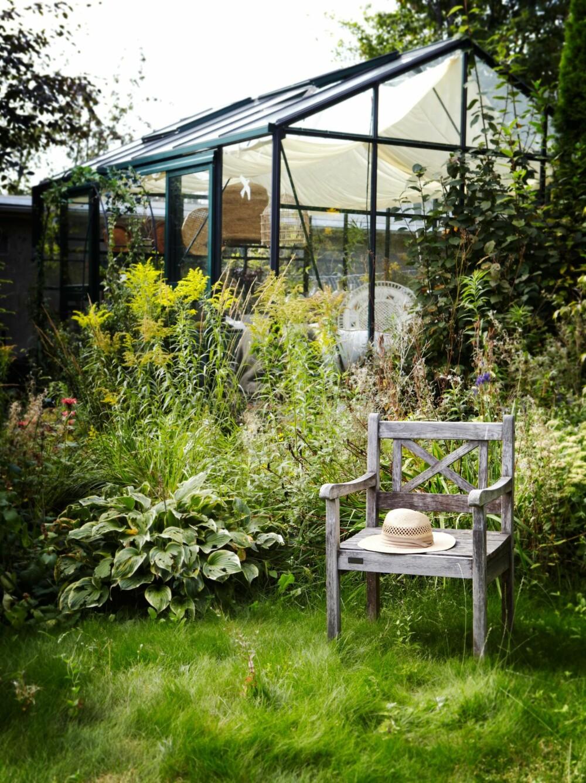 LA DET VOKSE: Drivhuset har virkelig grodd seg inn i hagen, og ikledd seg sine omgivelser. Styling: Steen & Aiesh og Juni Hjartholm.