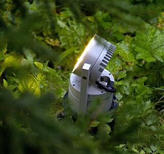 LED UTELYS: I ledlamper er det ingen lyspærer som skal skiftes. Armaturene har lang levetid og trekker minimalt med strøm.