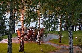 RETT FOKUS: De lyse bjørkestammene reflekterer lyset og gir uteplassen en lun atmosfære.