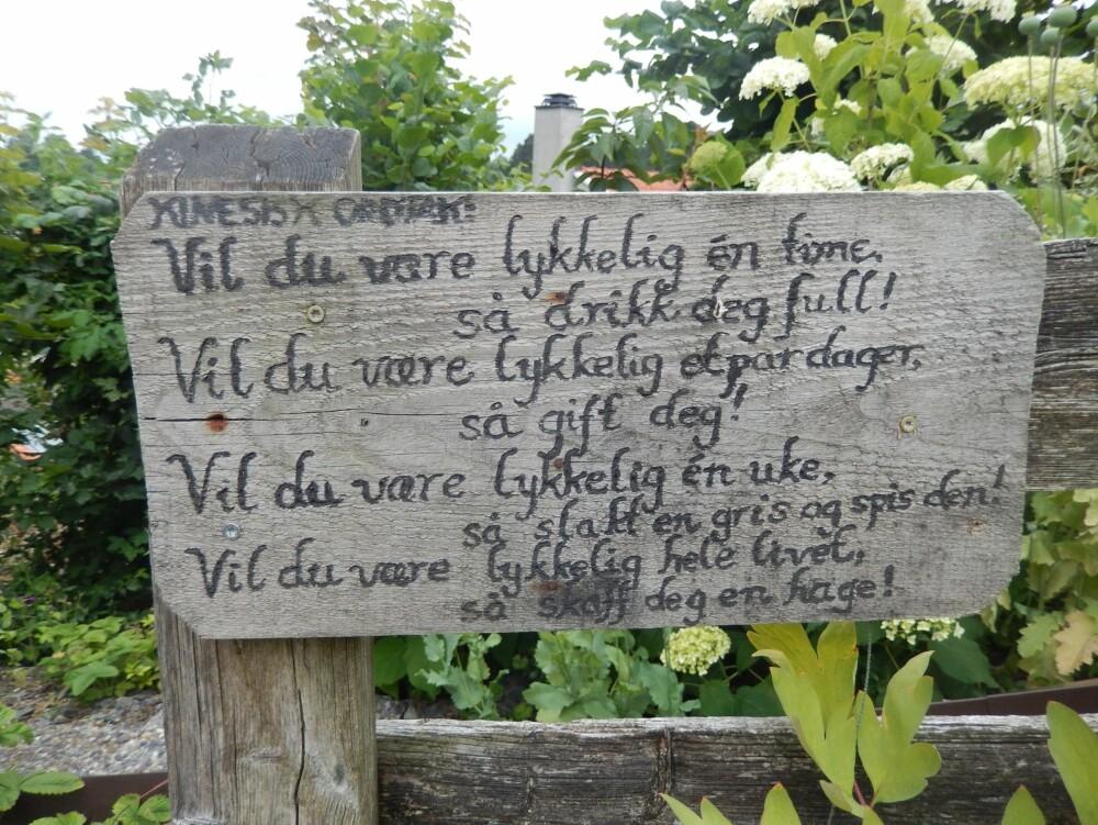 VISDOMSORD: Psykolog Grethe Nordhelle har mange visdomsord i hagen sin.
