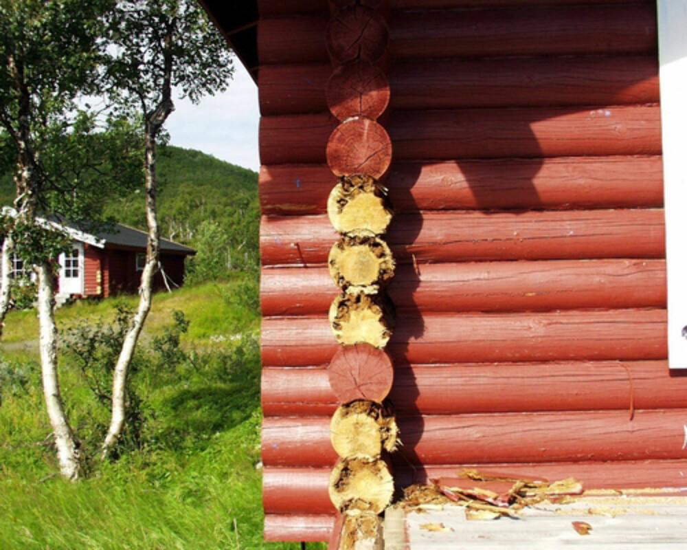 RÅTE I HYTTE: Lafteknuter er et utsatt punkt på hytter, men som en verditakst nødvendigvis ikke forteller noe om. (FOTO Mycoteam)