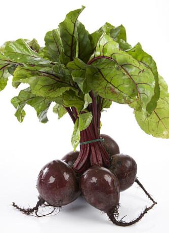 DEILIG SALAT: Rødbeter kan med hell plantes ut i en potte eller i hagen. Da vokser slike flotte blader opp og de kan du spise som salat.