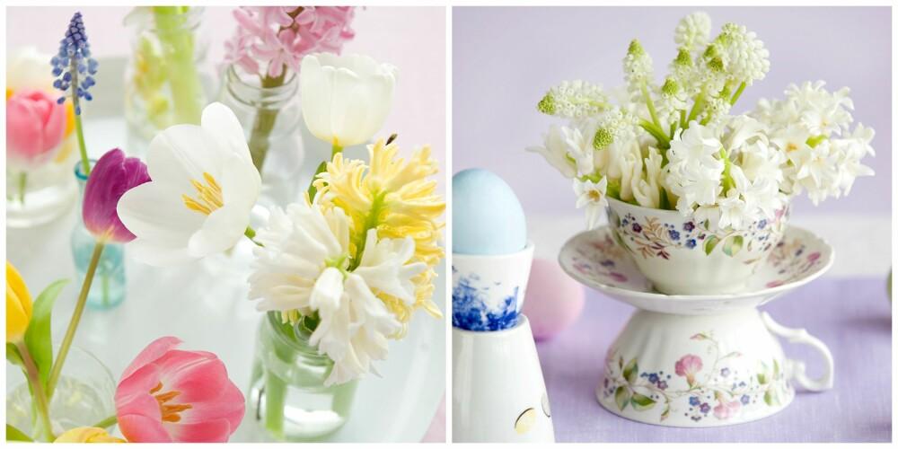 SMÅVASER: Samle avskårne blomster som tulipaner, påskeliljer, gåsunger, perleblomster og kirsebærkvister i små glass eller vaser. Eller hva med å finne frem noen søte, gamle tekopper som du pynter med vårlige blomster?