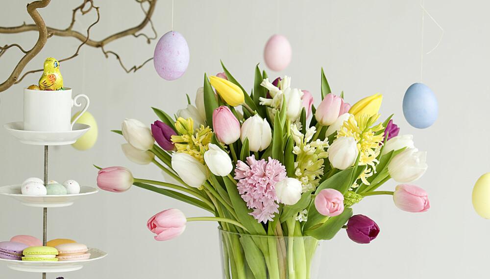 VÆR KREATIV: Du kan gjøre mye mer enn å pynte med gule lys og gule blomster til påske.
