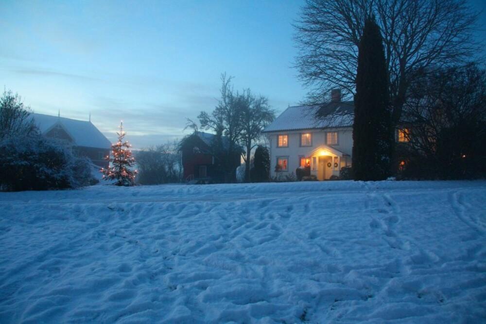 JULEMARKED I NORGE: Galleri Nyhuus på Gvarv har julemarked hver helg fra 14.november til 13.desember.