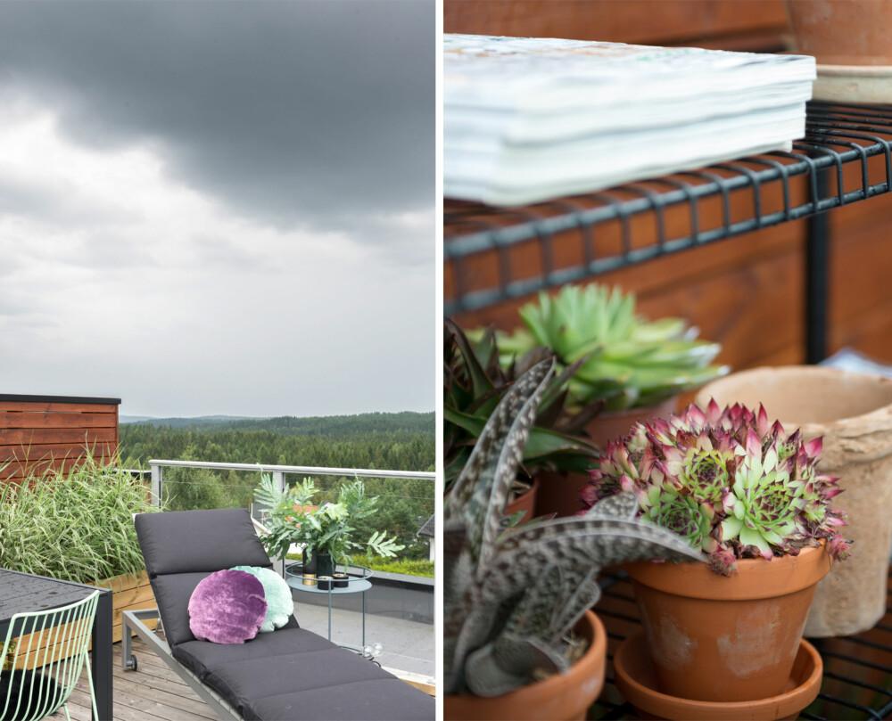 STRESSFRI SONE: En solid, men mobil solseng fra Ikea gjør det enkelt å slappe av, ytterst på terrassen. Trillebordet er fra Milla Boutique, og putene er fra Eske. Herfra dras blikket forbi byggefeltet og langt inn en skog som begynner å ligne på villmark.