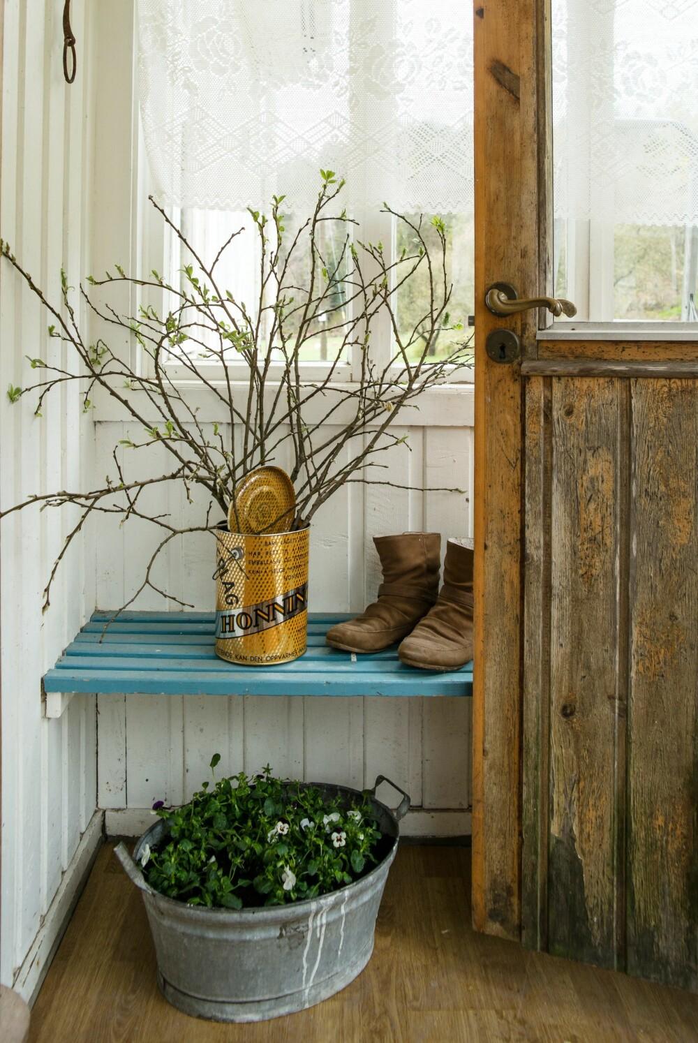 PYNT: En gammel blikkboks, fylt med vårens spirende kvist, pynter opp i bislaget.