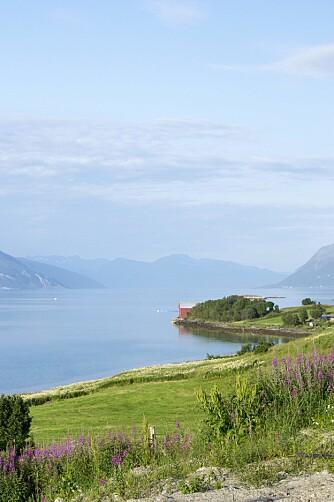 UTENFOR HARSTAD: Som et maleri ligger den flotte nordnorske naturen like utenfor dørstokken på Halsebø. Den flotte utsikten var en sterk medvirkende årsak til at det var nettopp hit Hilde og Rune ønsket å flytte i 2010.