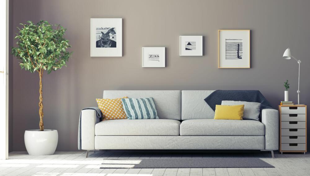 LEIE AV BOLIG: Bare det å henge opp noe på veggen kan koste mye jobb, om utleier krever at du tetter hullene og maler hele veggen når du flytter ut. Hvilke krav han eller hun setter bør du derfor ha helt klart før du setter i gang med noe.