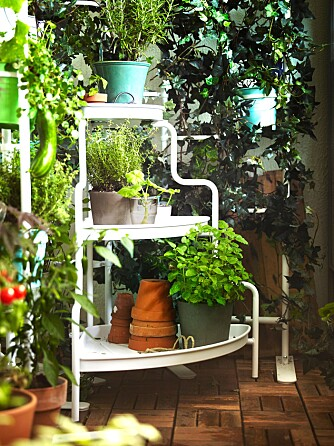 GRØNT: Tilfør deilige farge på den lille hageflekken eller balkongen din. FOTO: IKEA