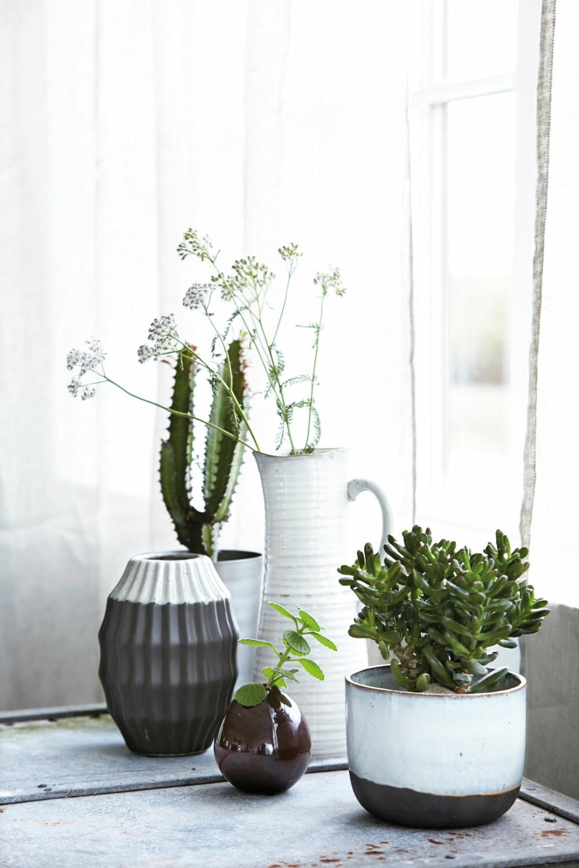 LEKRE VASER: Disse vasene er fra House Doctor, lignende får du blant annet hos Kremmerhuset.
