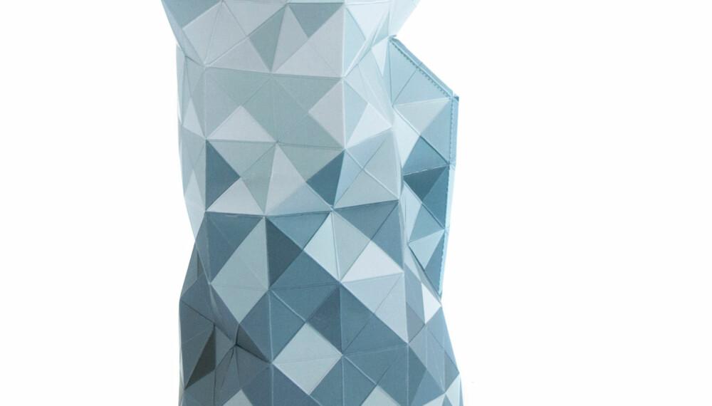 VASER: En særegen vase er alt som skal til for å løfte et rom til nye høyder. FOTO/Produsent: Room 21.