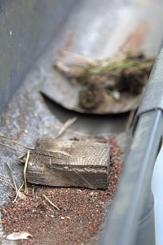 SJEKKPUNKT: Takrennen bør kontrolleres like ofte som taket, og eventuelt rask og rusk fjernes.