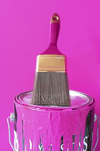 MULTIKUNSTNER: Eddik kan til og med brukes til å få malingsrester ut av inntørkede pensler.