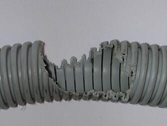 GNAGER: Slik kan en ihjelgnagd ledning se ut når mus og rotter har vært på ferde i hjemmet ditt.