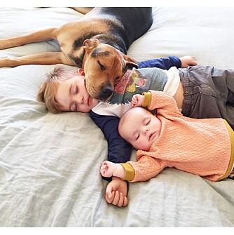 FORMIDDAGSLUR: Søsknene Beau og Evangeline sover formiddagsluren sin sammen med hunden Theo hver dag.