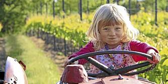Reisereportasje fra Lolland-Falster i Danmark  Foreldre og Barn
