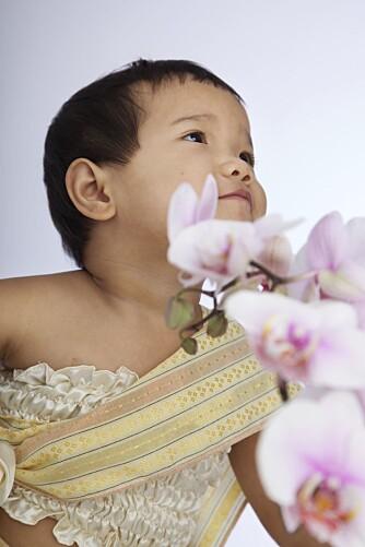 ARV FRA THAILAND: For foreldrene var det viktig at datteren fikk beholde sitt thailandske navn Ilada.
