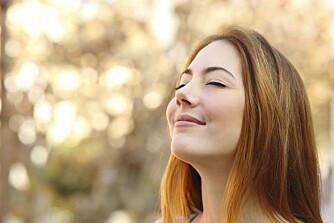 MINFULLNESS: Å begynne med mindfullness eller annen form for meditasjon skal være ekstra lurt hvis du vil være mer til stede i øyeblikket.