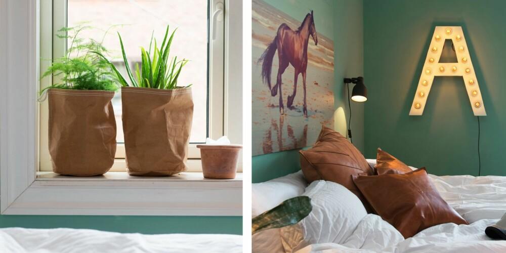 HJEMMESNEKRET: Planter i papir-potteskjulere fra Home & Cottage, står plassert i vinduskarmen. Plantene skaper liv i rommet. 2. Lampen formet som en A er laget av plywood. Det er skåret til og deretter malt. Lyspæresoklene er kjøpt på Clas Ohlson. Vegglampene er fra Ikea. Det hvite sengetøyet er fra Princess. Legg merke til hvordan fargene i rommet tas opp i bildet. Puter av lær og et lunt pledd er en spennende kontrast til det hvite.