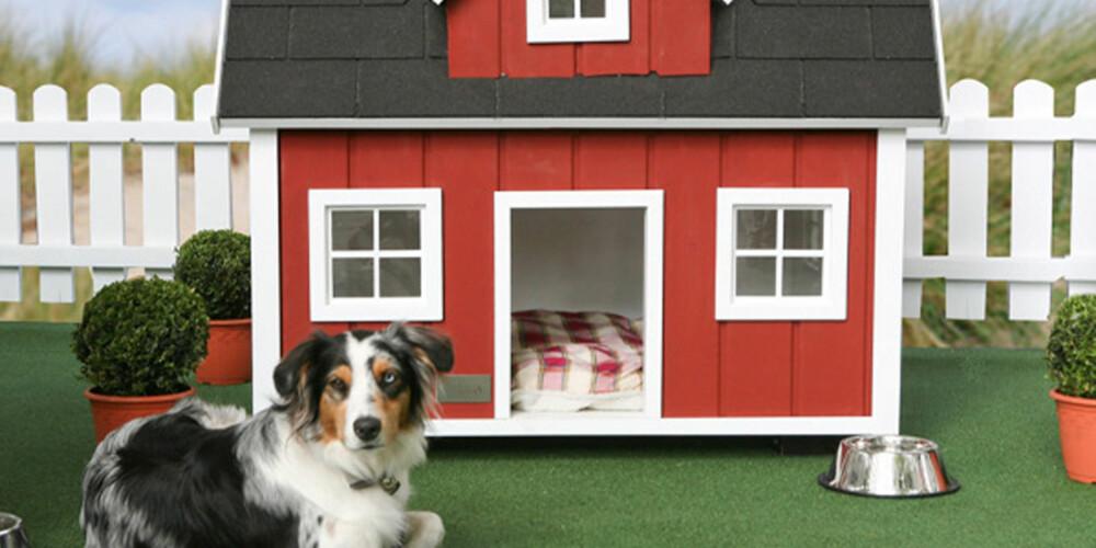 UT AV BYEN: Her er hundehuset for forstadshunden. Hundehaus Farm Dog House, som huset heter, sies å skulle passe for hunder som enten bor på en gård - eller drømmer om å gjøre det.
