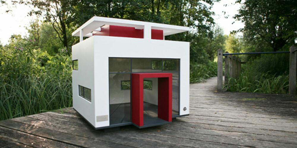 SAMBOERE: Dette huset er stort nok for at flere hunder kan bo her sammen, forklarer produsenten.
