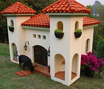 INGENTING BLE SPART PÅ: Dette huset tilhører hunden til supermodellen Rachel Hunter.