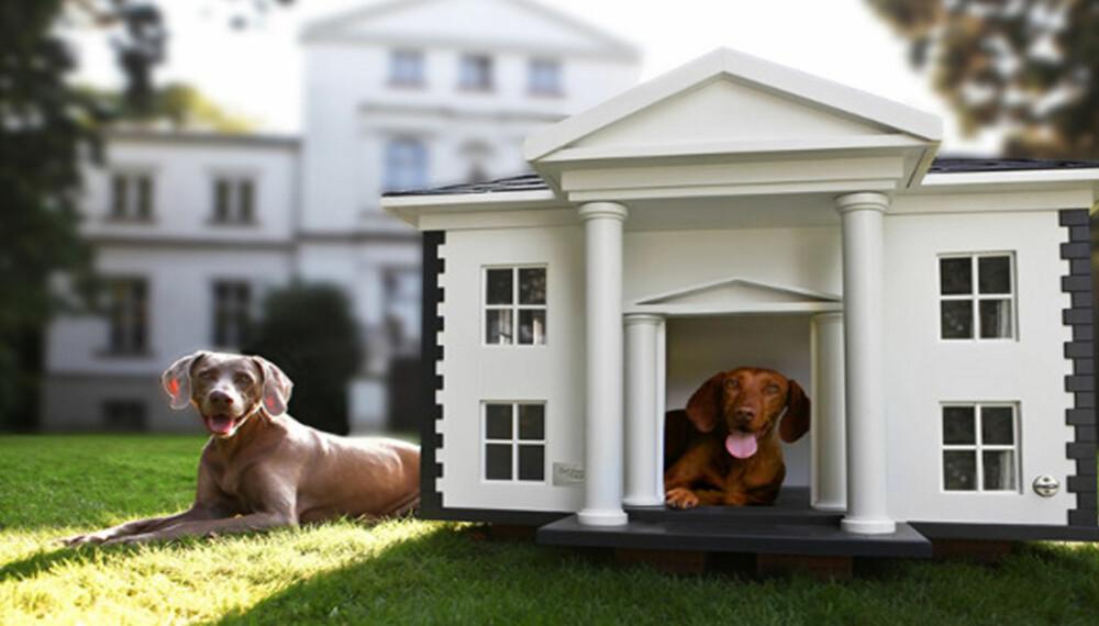 DET HVITE (HUNDE)HUS: Om ikke Obama-familiens lille hund har et slikt hundehus i bakhagen, burde noen tipse dem om det.