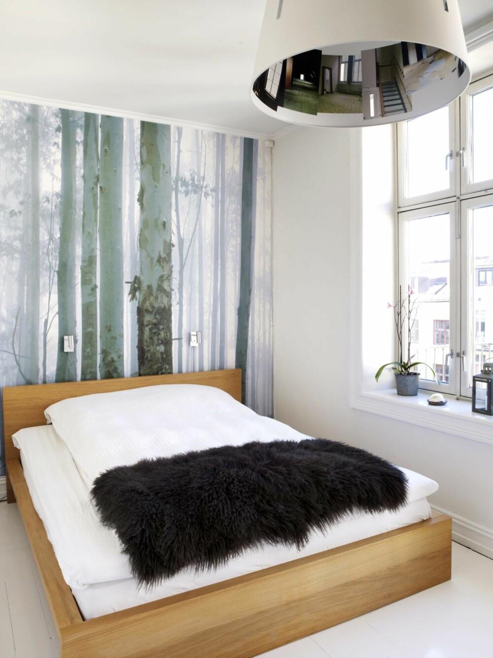 TAPET: En stilig fototapet kan fungere flott som dekorasjon på veggen bak sengen. Det bryter opp det hvite rommet og skaper et dekorativt blikkfang.