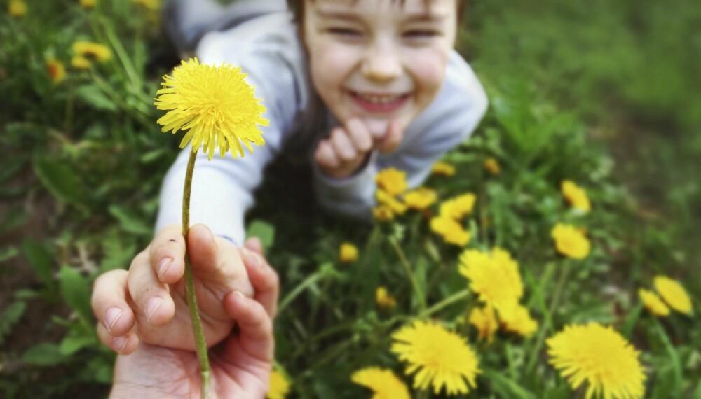 RAUSERE: En amerikansk forskningsstudie antyder at barn fra familier med lav inntekt er mer gavmilde enn barn fra rikere familier.